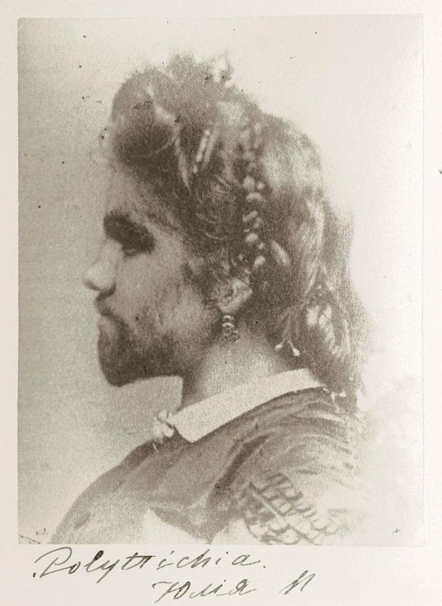 她是最美也是最丑的女人,被丈夫当做摇钱树,死后还被做成标本史书