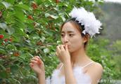 大樱桃,小樱桃哪个更好吃?