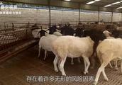春节过后,农民工不要去这3个地方工作了,迟早倒闭没钱图