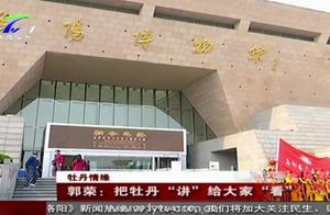 """洛阳博物馆,从文物看尽""""千年牡丹"""""""