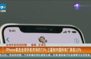 手机市场份额:iphone拿走73%,三星和中国所有厂商各13%