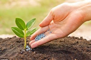 复合肥:春耕结束 夏季肥推进缓慢 企业开工率稳中回落