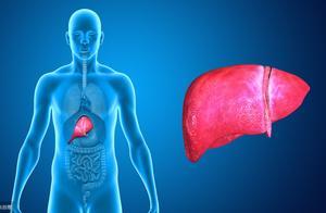 不明高烧恐是肝病作祟!盘点慢性肝病的八大表现