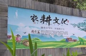 今天,都江堰市领导就绿道建设、林盘修复和乡村振兴项目推进工作提出要求!