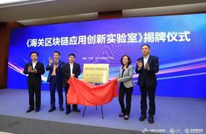 网络、标准、联盟三项第一,金融壹账通赋能国内首个跨境贸易网络