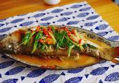 红烧豆瓣鱼的做法5分极速11选5图,红烧豆瓣鱼怎么做