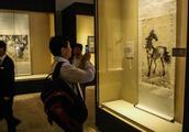 中国园林博物馆展出52件徐悲鸿真迹