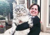 铲屎官将养猫当成事业,成功收获两百斤肥猫,每晚被猫当床垫!