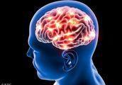 脑梗也是一种常见的疾病,我们该怎么预防呢?看看专家怎么说?