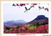 这就是我梦中的桃花岛 ,如此绝世美景,送给有福之人!