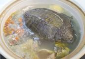 甲鱼汤怎么做好吃,排骨甲鱼汤的家常做法