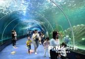 """福州永泰欧乐堡海洋世界1日试营业 到山里看""""海""""去"""
