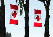 油菜籽出口受挫,还遭遇信任危机,加拿大却还在自欺欺人?