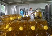 食用油厂家生产时做到这五点,才能保证产品质量合格!