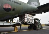 韩国向朝鲜空运200吨济州柑橘 作为2吨松茸的回礼