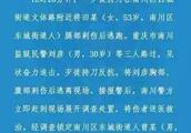 重庆一刑满释放人员刺伤法官、刺死狱警被批捕