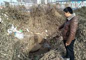 自来水管爆管,濮阳村民多块耕地被淹!讨说法一个多月没人管