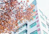 潍坊市职工长期护理保险试点成效明显