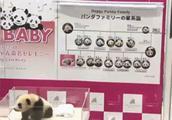 日本出生的熊猫宝宝有名字啦!
