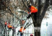 聊城:彩灯挂 年味浓