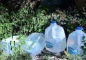 美国四名女性为非法移民送水被判刑