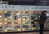 无人售货,扫码选购,自动称重,扫码买菜!无人智能生鲜柜首现河北省会社区