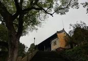 """紹興舜王廟:神秘的""""三怪""""現象已流傳千百年,至今無人能破解"""