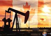 低油价惹祸,每天损失8000万!美国石油又来中国,加拿大或出局?