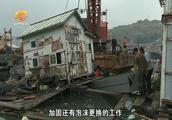 东港石油化工码头化学品泄漏事件追踪:持续清理污染物加固渔排