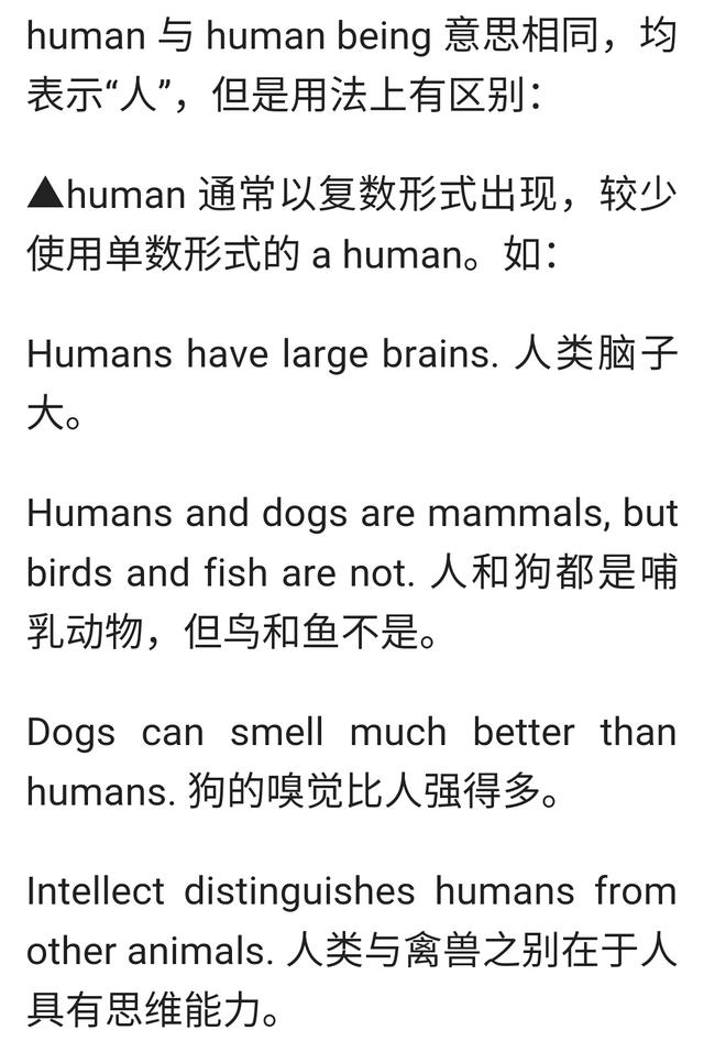 human和 human being的区别