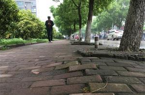 地砖破损还常有车停违停占用,市民盼人行道更便民