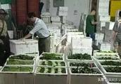 二级农批悄然雄起,蔬菜分销迎来革命
