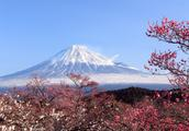日本开始免费送房,你最想去日本哪里玩呢